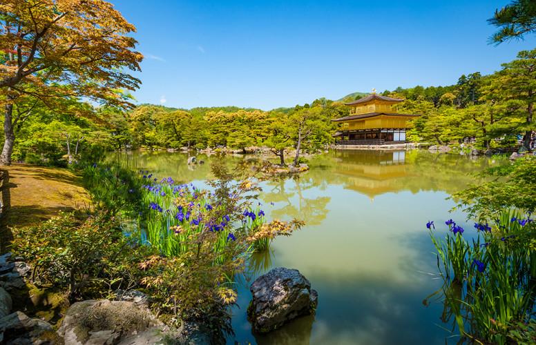 golden-pavilion-kyoto-japan-960