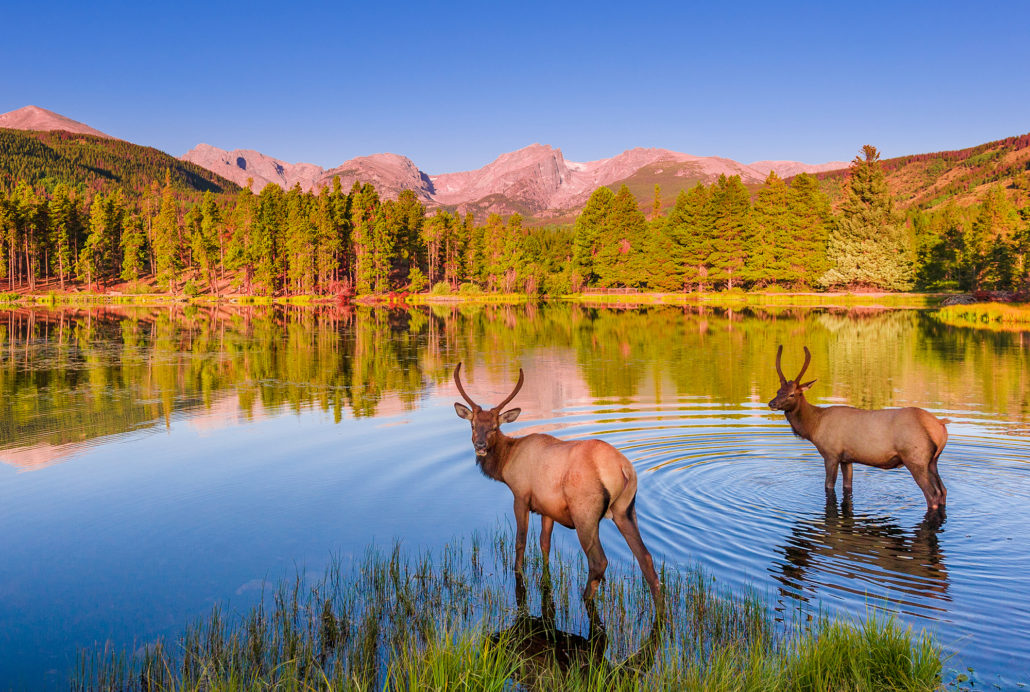 Things To Do In Rocky Mountain National Park Travel Caffeine