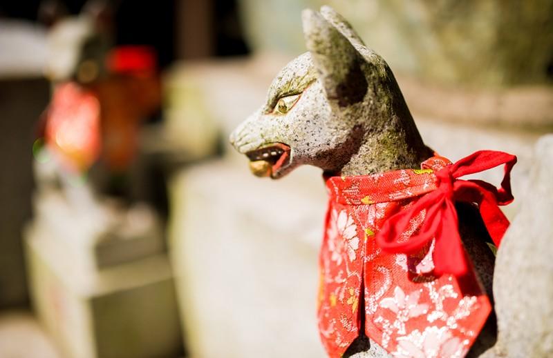 kyoto-fushimi-inari-shrine-213