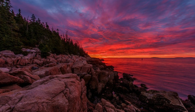 acadia-national-park-shoreline-sunrise-L