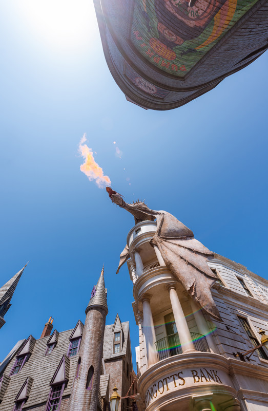 dragon-fire-daytime-portrait-diagon-alley