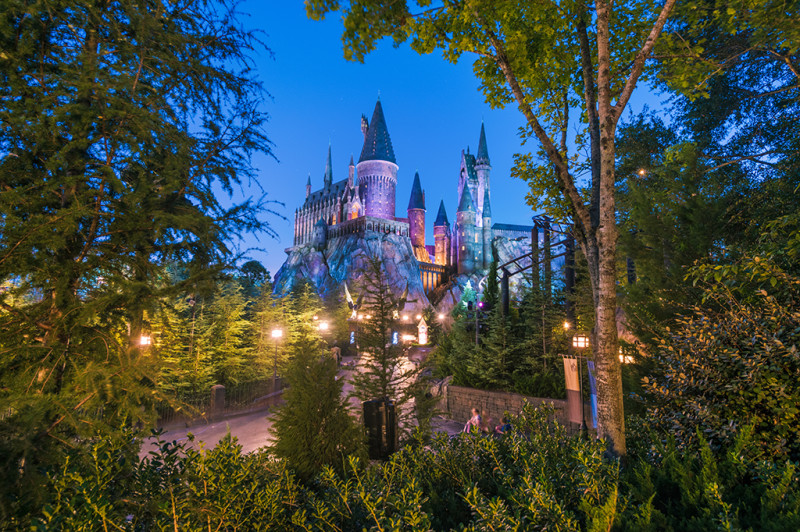 hogwarts-castle-wizarding-world-harry-potter-trees