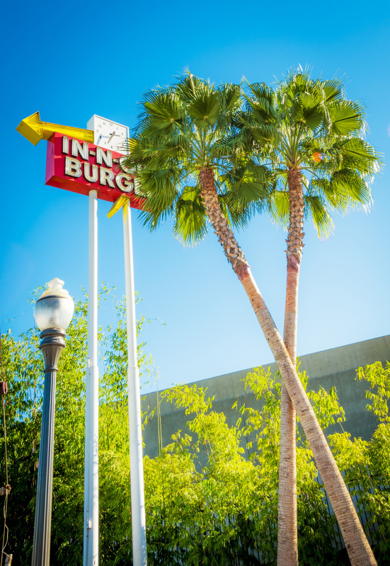 in-n-out-sign-trees