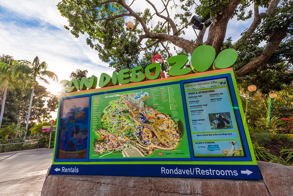 San Diego Zoo Info Tips Travel Caffeine