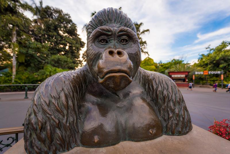 san-diego-zoo-california-641
