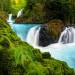 paradise-falls-fisheye copy