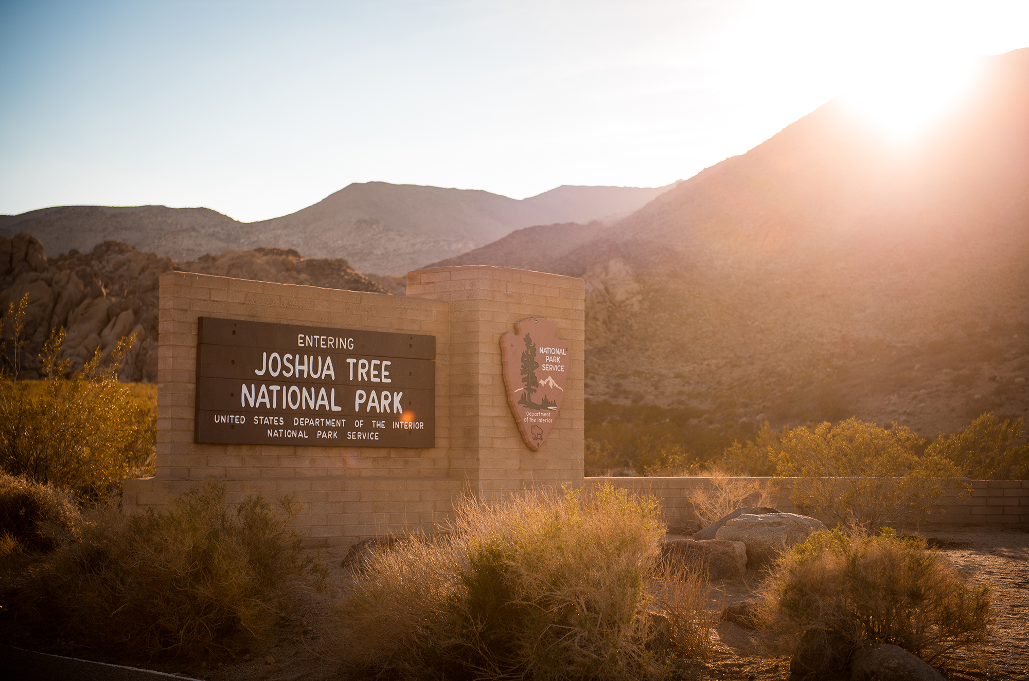 Things To Do In Joshua Tree National Park Travel Caffeine