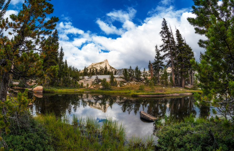 lower-cathedral-lake-trees-framed-yosemite-national-park