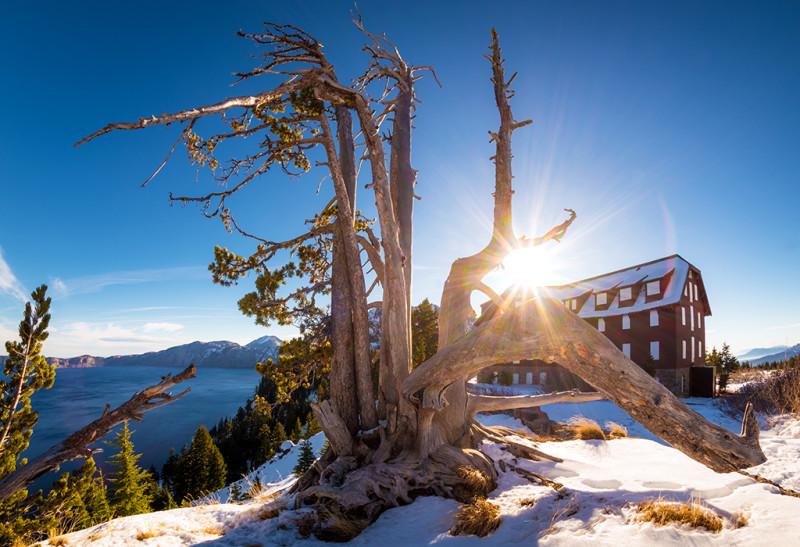 crater-lake-national-park-winter-tree-sunburst copy