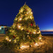 crystal-cove-christmas-tree-dusk-fisheye copy