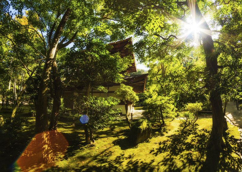 silver-pavilion-grass-grounds-sunburst-morning-kyoto-japan