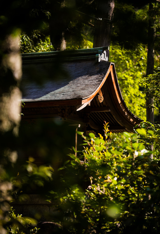 silver-pavilion-kyoto-japan-bricker-010