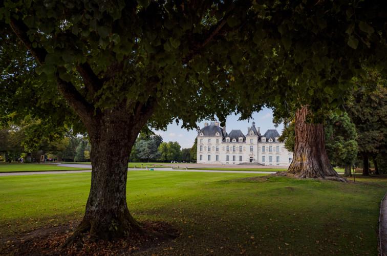 chateau-de-cheverny-loire-valley-france-066