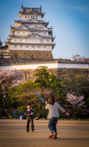 himeji-castle-hanami-blossom-night-lighting-japan-539