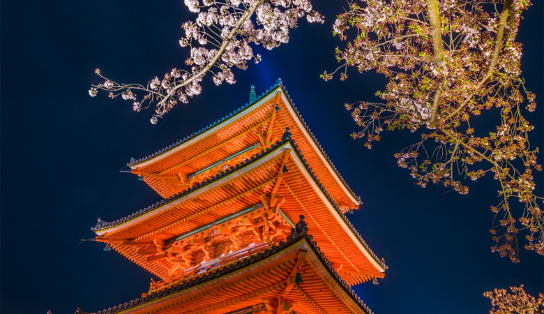 kiyomizudera-temple-kyoto-japan-sakura-cherry-blossom-night-lighting-pagoda-bricker