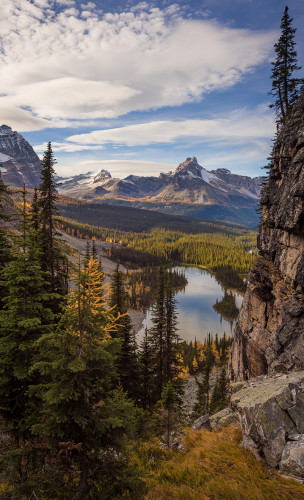 opabin-plateau-circuit-hike-yoho-national-park-520