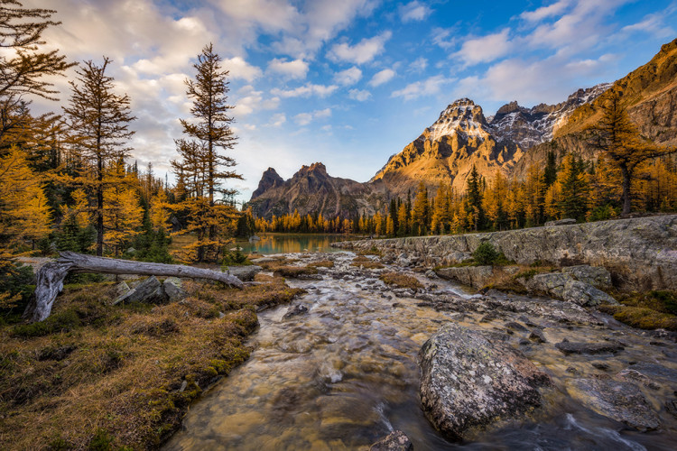 opabin-plateau-stream-hike-yoho-national-park-520