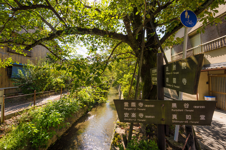 path-philosophers-walk-kyoto-japan-fall-551