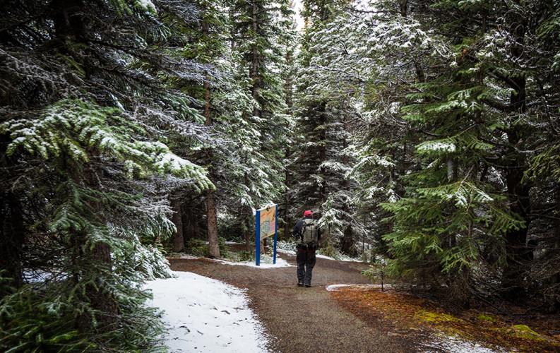 peyto-lake-overlook-hike-banff-national-park-snow-615
