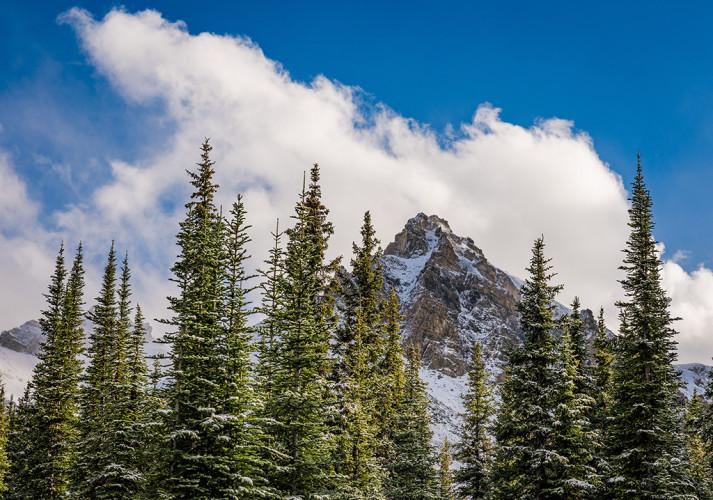 peyto-lake-overlook-hike-banff-national-park-snow-618