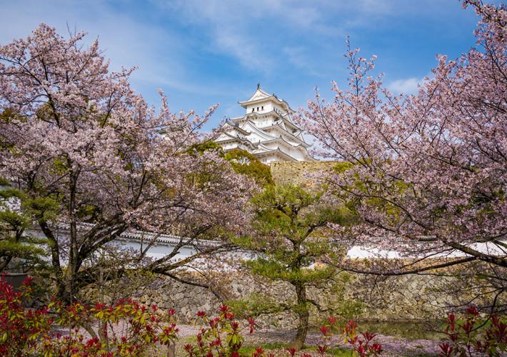 himeji-castle-japan-20170219355