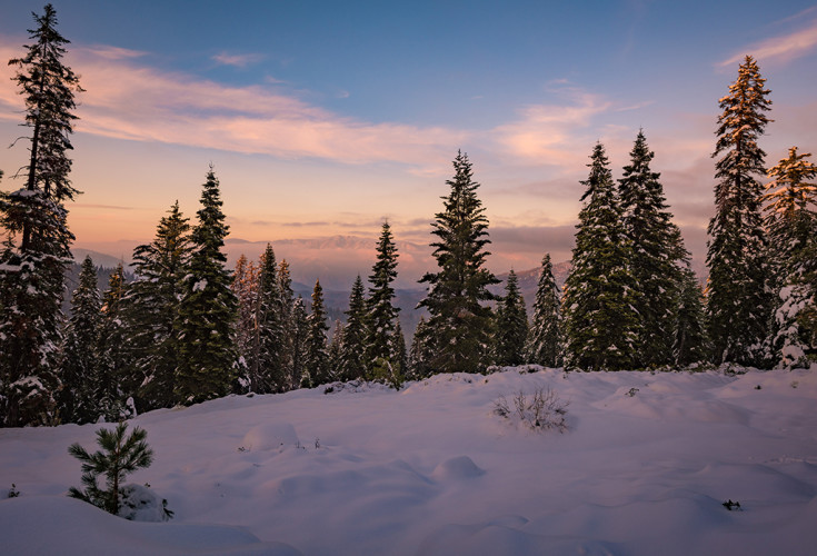 kings canyon national pk divorced singles dating site The alaskan speed dating us national stagegokhansencom-for new jersey & new york singles events national park sequoia & kings canyon national.