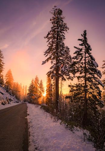 sequoia-national-park-kings-canyon-california-637