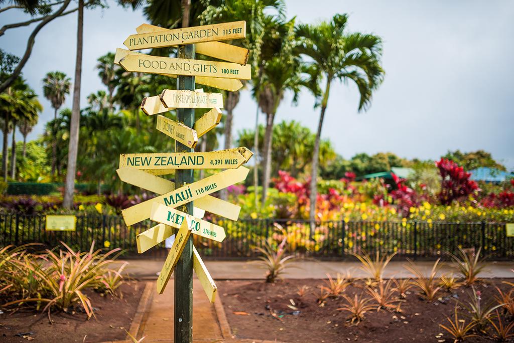 Pineapple Tour Oahu Hawaii