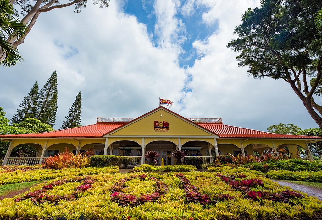 Dole Plantation Review & Tips - Travel Caffeine