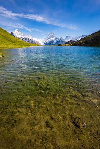 grindelwald-first-lake-bachalpsee-hike-switzerland-20170308402