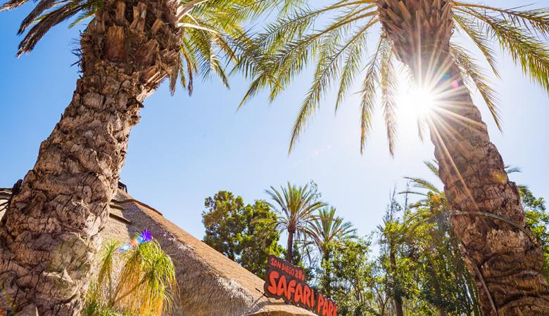 safari-park-san-diego-zoo-southern-california-787