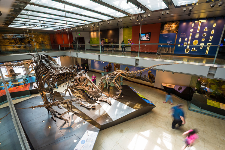 natural-history-museum-los-angeles-county-dinosaur-hall-061