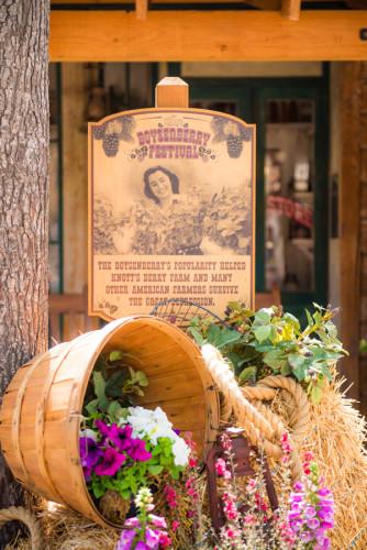 knotts-berry-farm-theme-amusement-park-southern-california-003