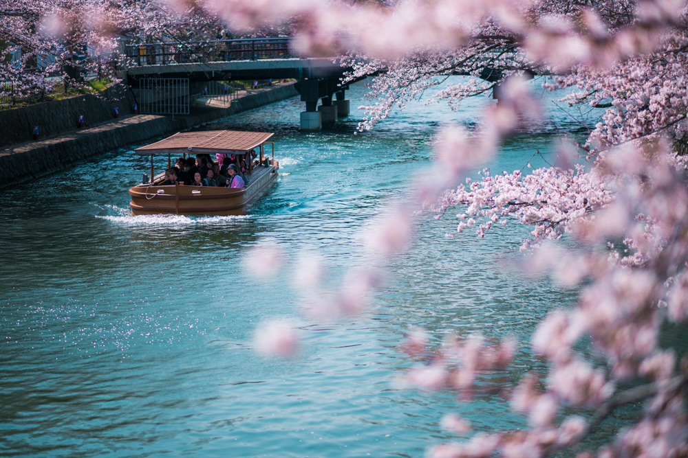 Lonely Planet Japan Travel Guide