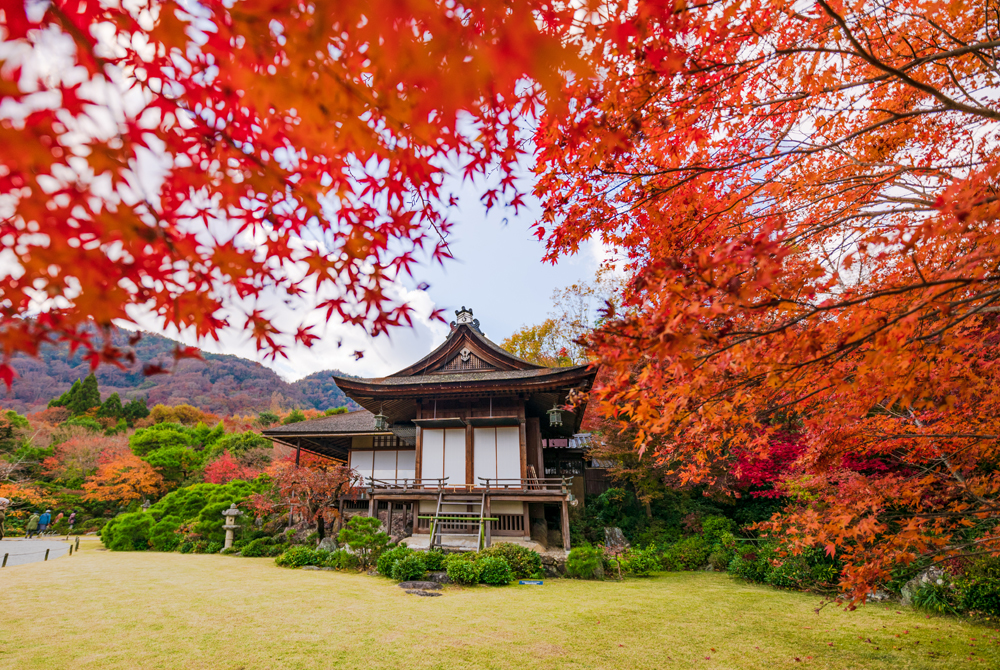 Kinder Garden: 3-Day Kyoto, Japan Fall Colors Itinerary