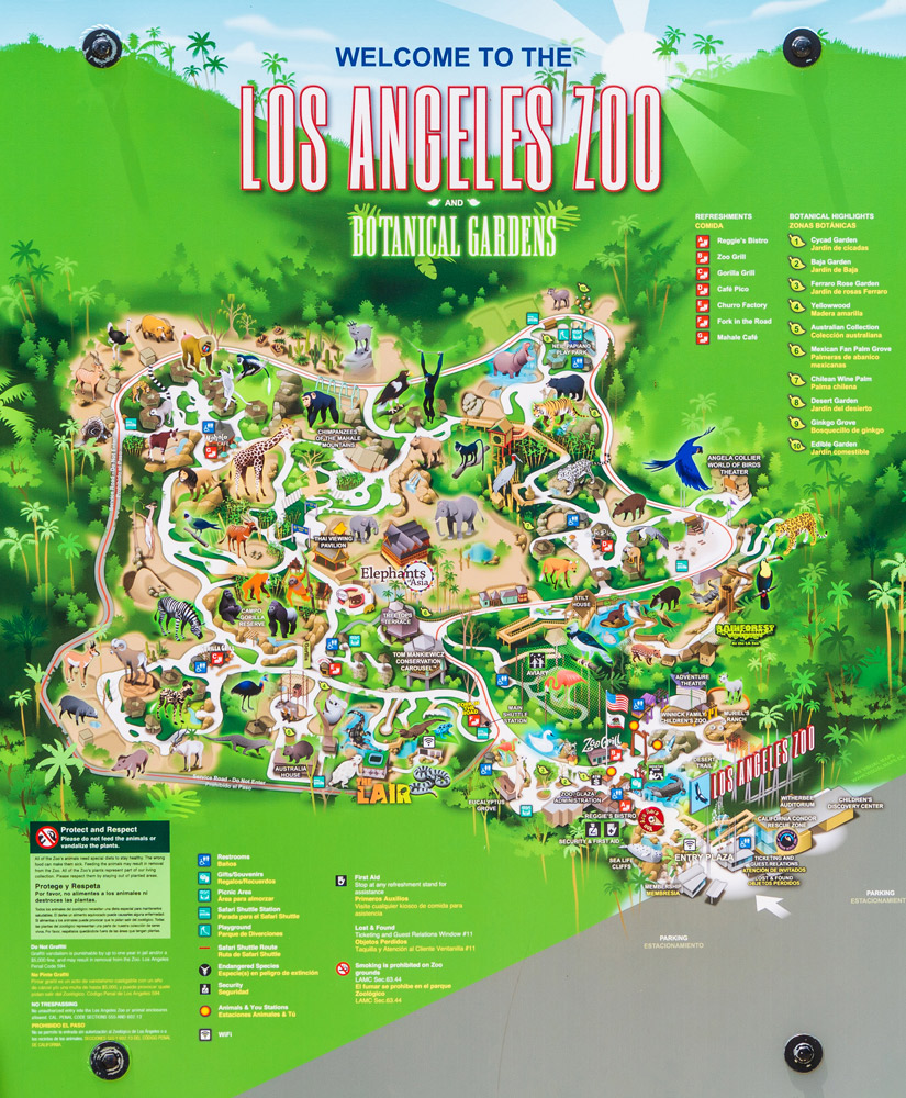 Los Angeles Zoo Review Info Tips Travel Caffeine
